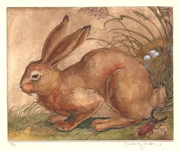 rabbit etching CVS carousel