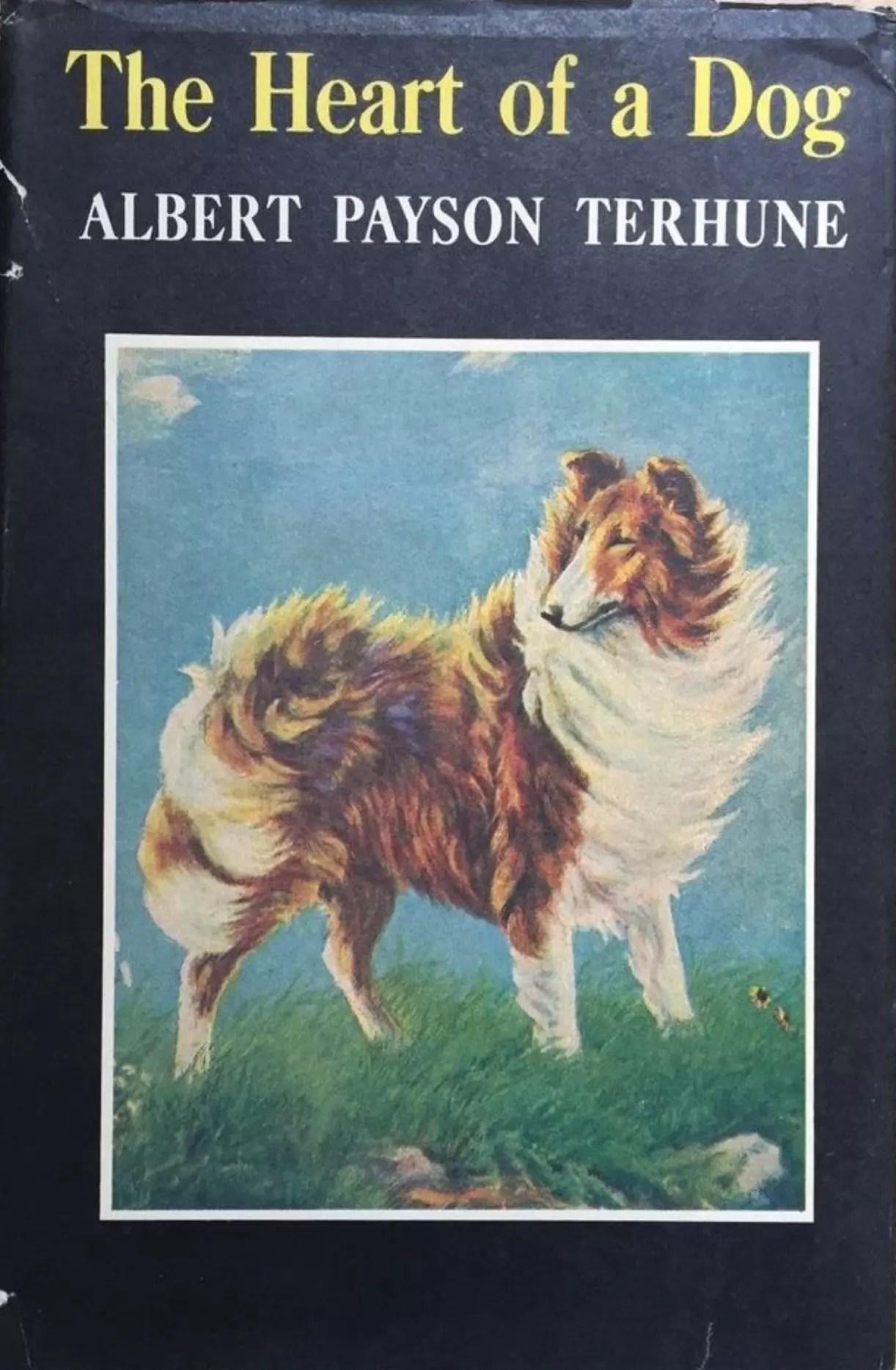 JDE Heart of a Dog Albert Payson Terhune DJ Cover
