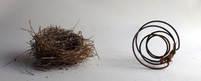 nest and bed spring