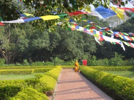 A Monk at Buddha's Birthplace - Lumbini Nepal