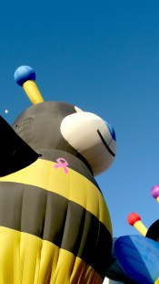 Albuquerque Balloon Fiesta Breast Cancer Bees- visit www.beautifulfillment.com for more inspirations!