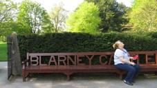 Blarney Bench Ireland - by Anika Mikkelson - Miss Maps - www.MissMaps.com