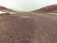 My buddy for four days in Iceland - by Anika Mikkelson - Miss Maps - www.MissMaps.com