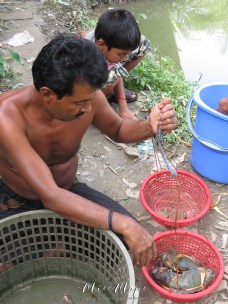 a-family-weighing-crabs-with-plastic-bins-and-stones-bangladesh-by-anika-mikkelson-miss-maps-www-missmaps-com