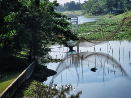 Fishing Nets - Rural Bangladesh - by Anika Mikkelson - Miss Maps - www.MissMaps.com