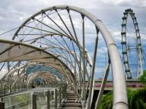 Singapore Flyer and Helix Bridge - Amazing Architecture - by Anika Mikkelson - Miss Maps - www.MissMaps.com