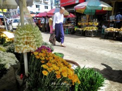 Fresh Flowers Every Day - and a man in Longyi - Yangon Street Market - Yangon Rangoon Myanmar - by Anika Mikkelson - Miss Maps - www.MissMaps - www.MissMaps.com