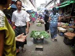 Mid-Street Leafy Greens - Yangon Street Market - Yangon Rangoon Myanmar - by Anika Mikkelson - Miss Maps - www.MissMaps - www.MissMaps.com