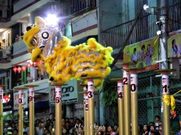 Yellow Lion Dancers During Competition - Chinese New Year - Chinatown - Yangon Myanmar - by Anika Mikkelson - Miss Maps - www.MissMaps.com