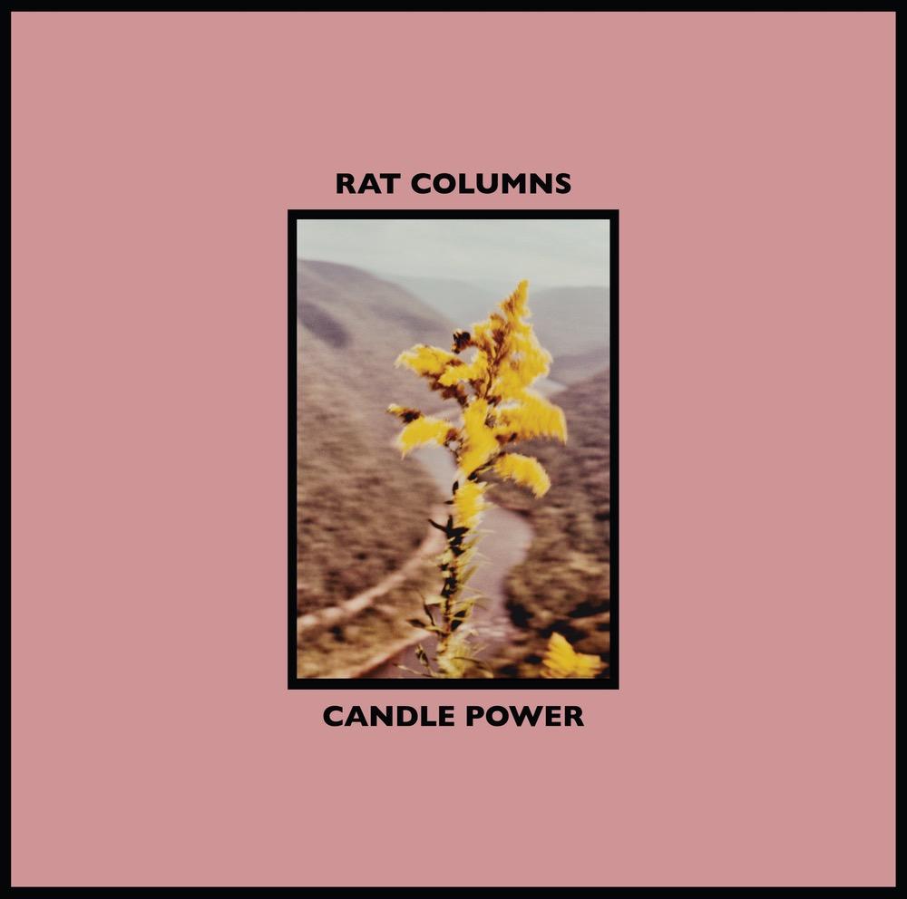 """Résultat de recherche d'images pour """"rat columns candle power"""""""