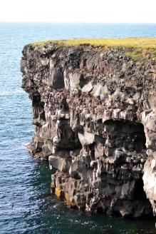 Hafnaberg Cliffs