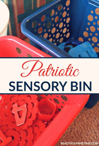 Patriotic Sensory Bin and Color Sorting Activity: The point of the activity is just to take the items and put them in the corresponding color basket.
