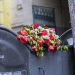 Roses in the dumpster: seeing God in everyday life