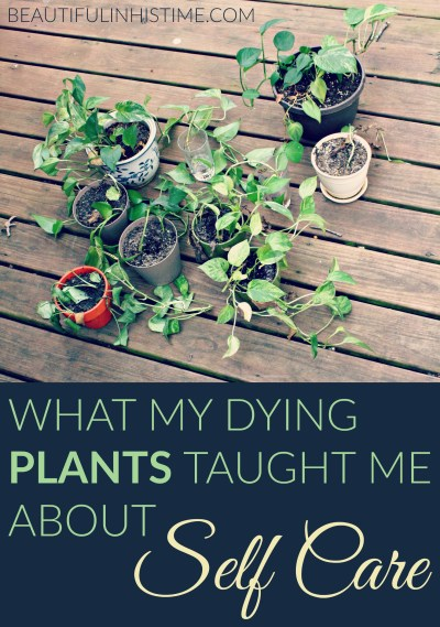 "WHAT MY DYING PLANTS TAUGHT ME ABOUT SELF CARE: Plants are supposed to be beautiful and life giving. But when I look at them, I only see a box yet unchecked, I only hear ""you should be"" whispering to me."
