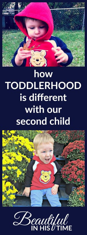 how-toddlerhood-is-different