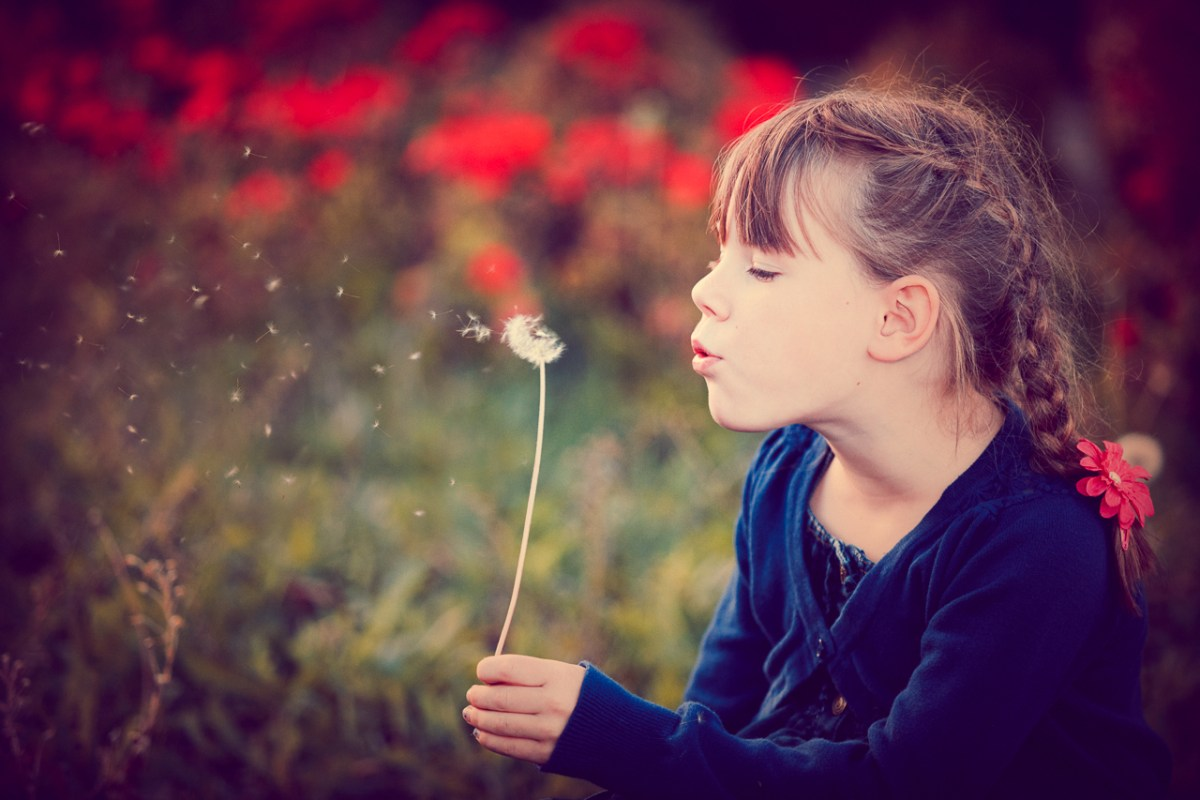 Girl blowing on dandelion seeds