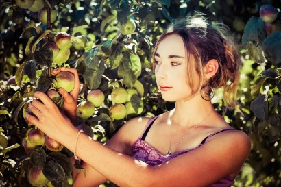 Pretty young farm girl picking fresh apples from the tree