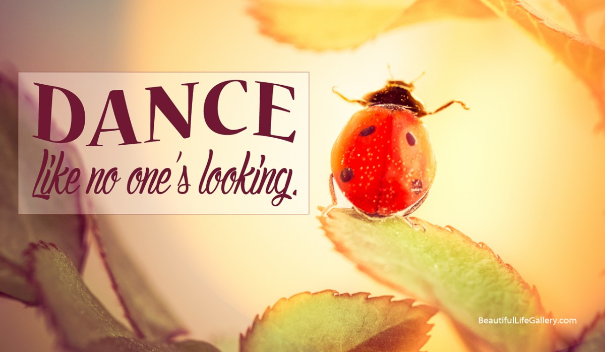 ladybug-0776-Edit-Edit