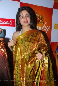 0013-poonam-kaur-high-resolution-nagavalli-collections13