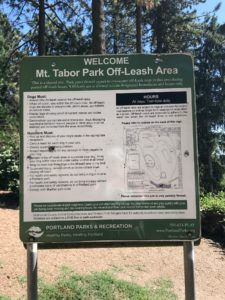 off leash area at Mt. Tabor