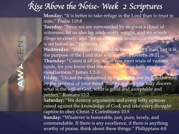 Rise above the noise: week 2