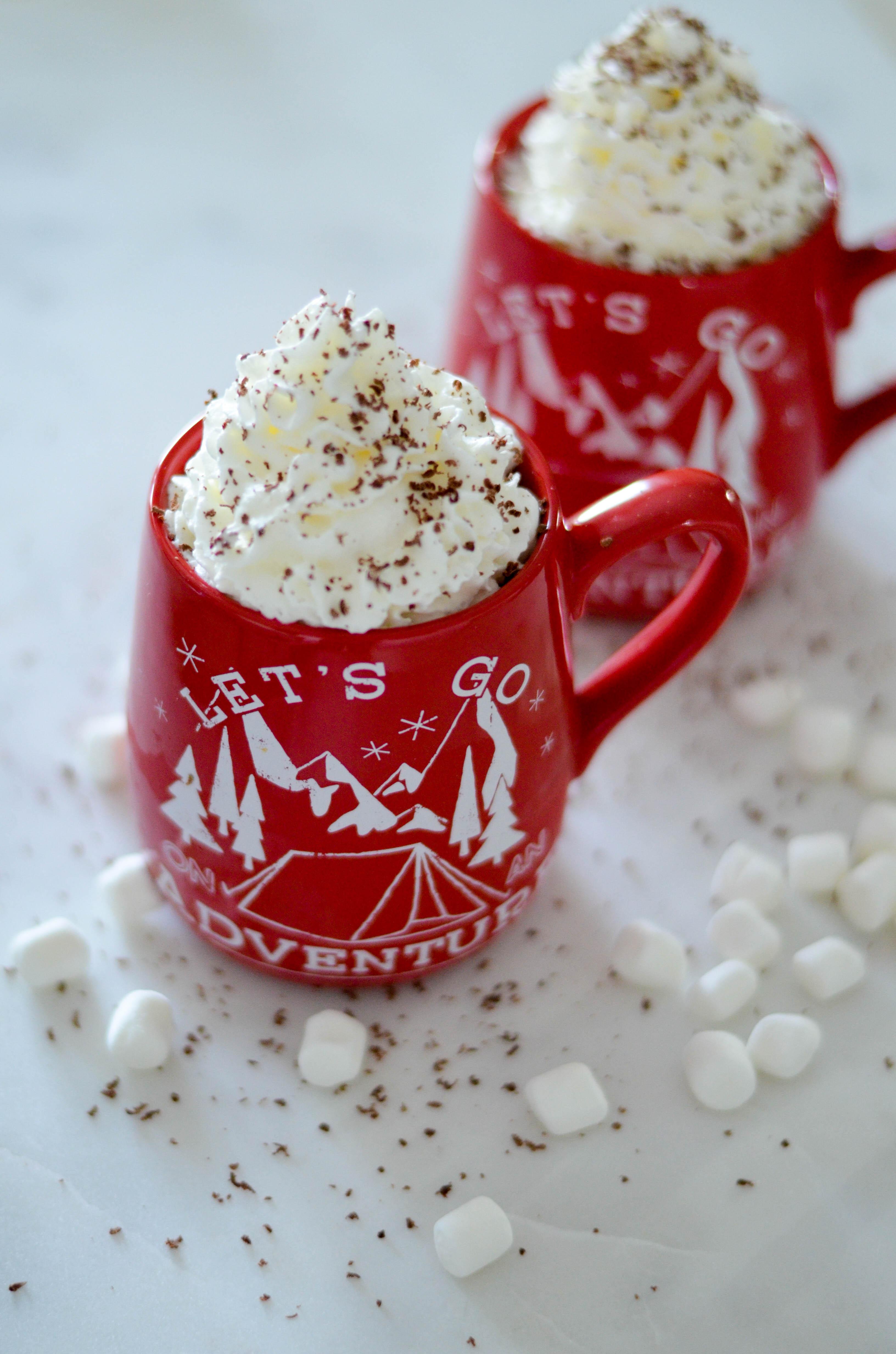 hot-cocoa-toasted-marshmallow-recipe-6