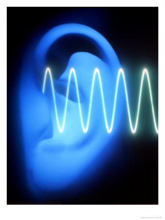 213286ear-with-sound-wave-posters