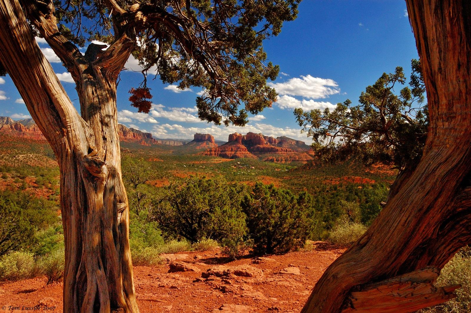 Red Rocks Of Sedona Arizona United States Beautiful Places To Visit