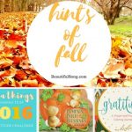 Looking Ahead to Fall ( Plus a book review)