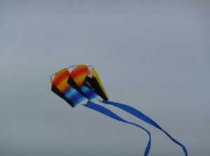 One Big Kite