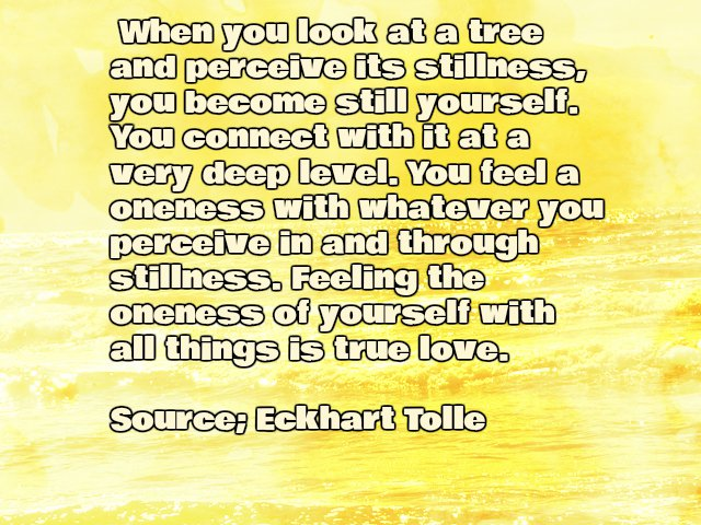 Inspirational Eckhart Tolle Silence Quote