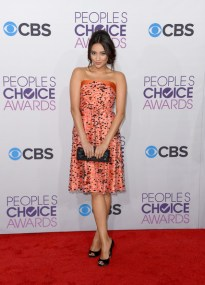 39th+Annual+People+Choice+Awards+Arrivals+UhbcFl8ee-bl