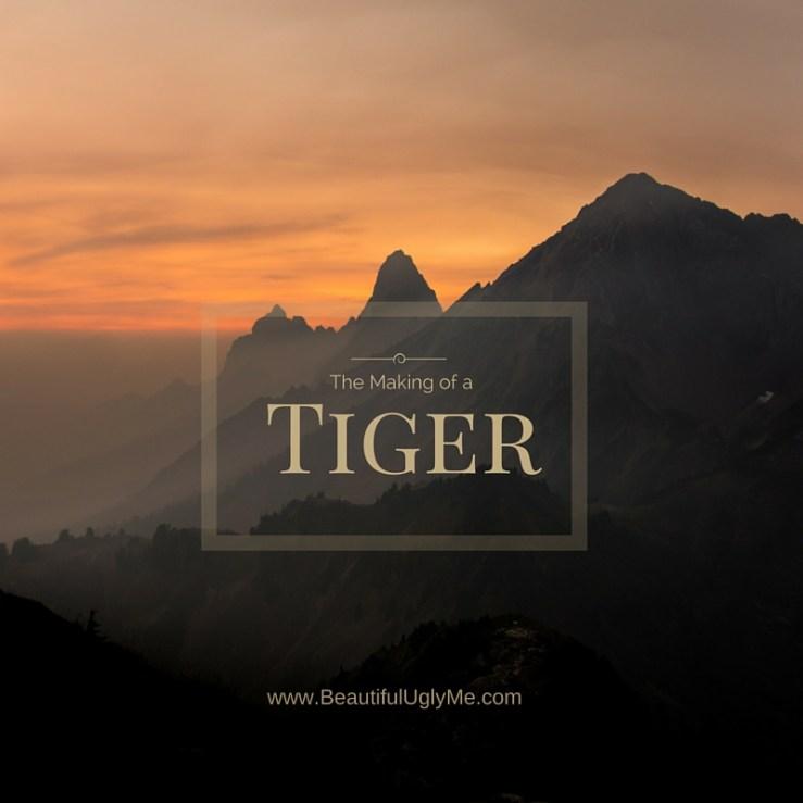 Making of Tiger