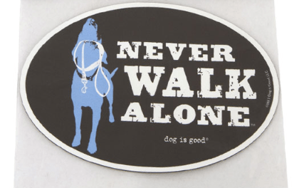 never walk alone car magnet at beautify the beast