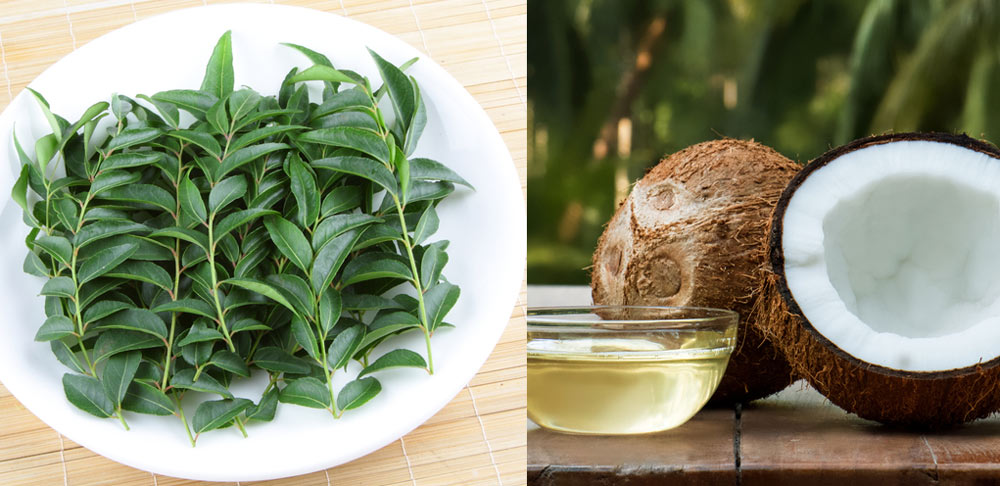 Curry-Leaves-and-Coconut-Oil-For-Hair-Growth