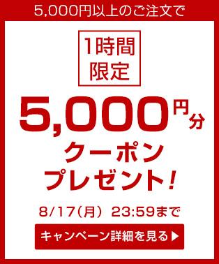 5000yen_coupon_pb_m_20150813