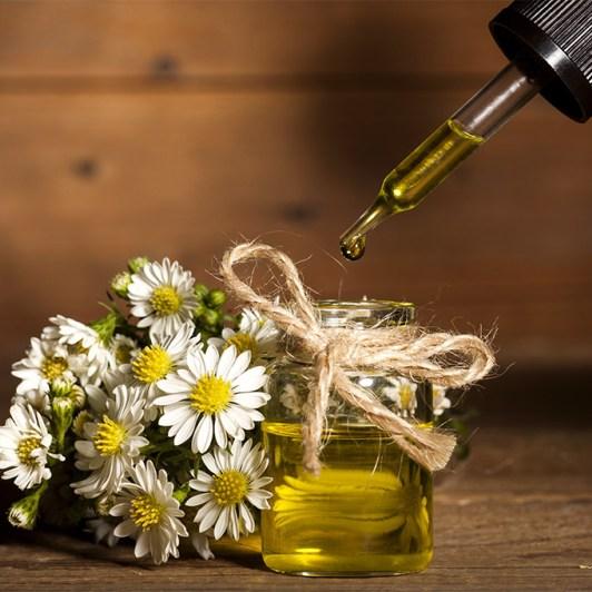 Anthemis Nobilis Flower Oil
