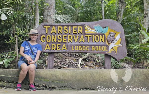 tarsier_4