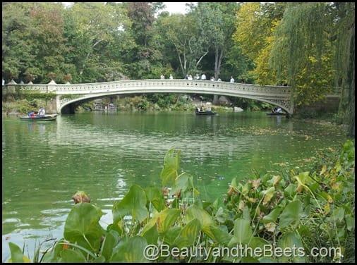 Bow Bridge- Central Park