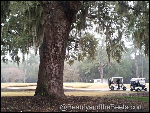 Golfers at Caldonia