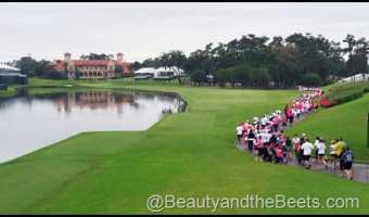 Donna 5K- THE PLAYERS Championship