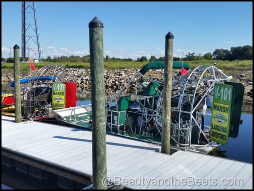 Orlando Airboat Tours Beauty and the Beets (3)