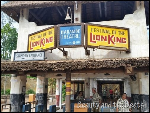 Festival of the Lion King Disney Animal Kingdom Beauty and the Beets