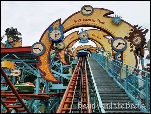 Primeval Whirl Disney Animal Kingdom Beauty and the Beets