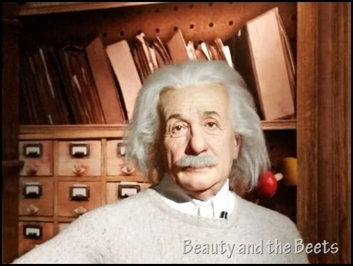 Albert Einstein Madame Tussauds Orlando Beauty and the Beets