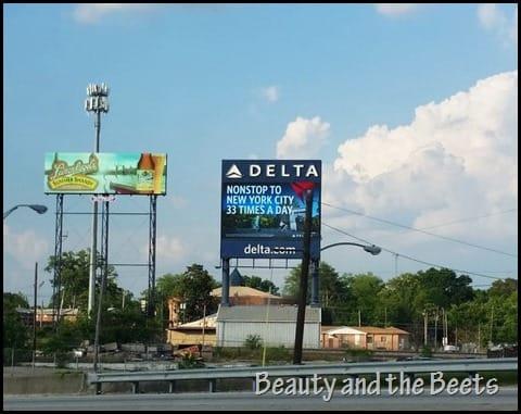 Delta Atlanta Beauty and the Beets