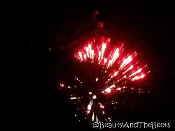 Fireworks Savannah Beauty and the Beets