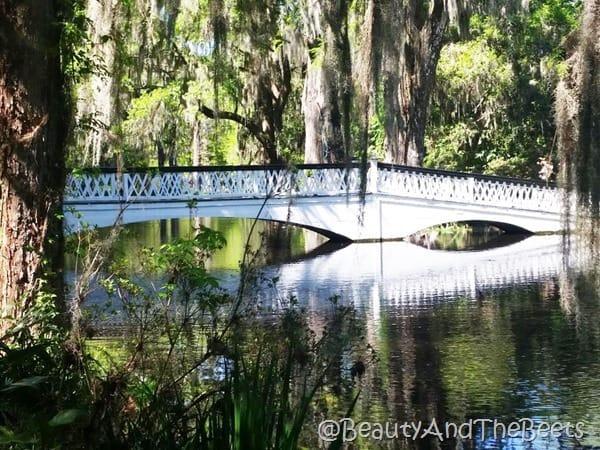 Bridge Magnolia Plantation