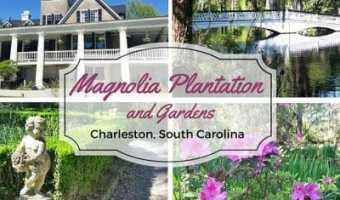 Magnolia Plantation and Gardens – Charleston, South Carolina