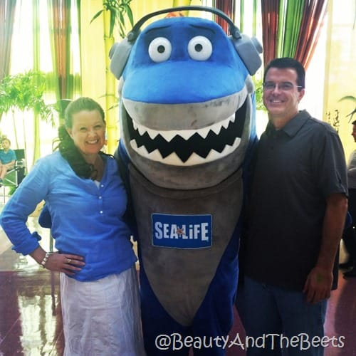 Sea Life Orlando Beauty and the Beets